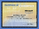 Microsoft Certified Professional (MCP C#, .NET)