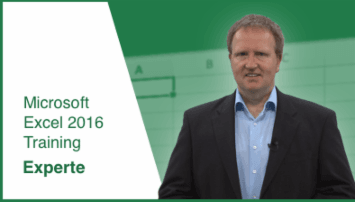 Microsoft Office Excel 2016: Level 3 (Experte) - von SONIC  Performance Support - quofox